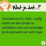 Resultaat Stichting Haarwensen 2016